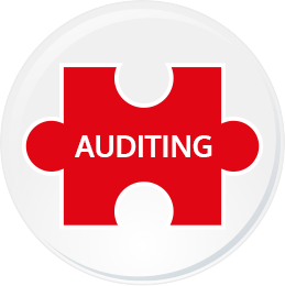 button 3 auditing
